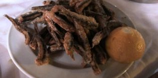 Great traditional Greek food – but you have to be patient: Palia Taverna tou Psarra (14. September 2017)