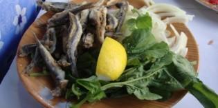 17. April 2011: Restaurant at the Fish Market
